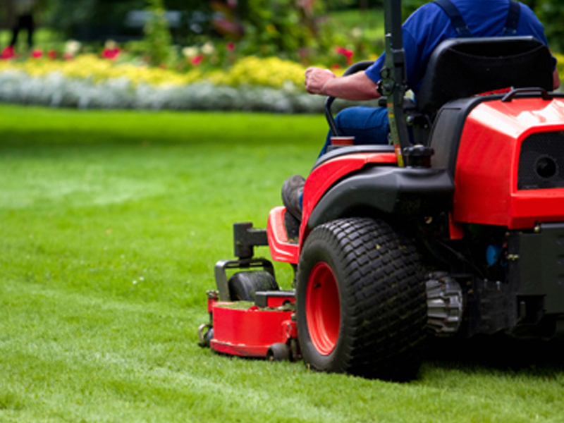 Image of us doing lawn care maintenance