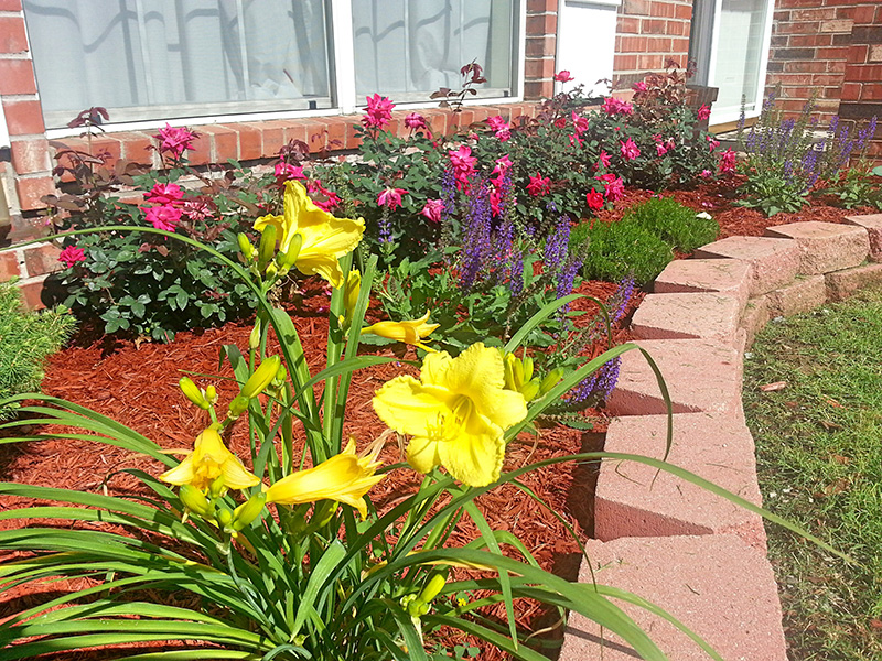 beautifully residential landscaped flower bed